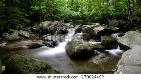 A beautiful stream winds through the North Carolina mountains