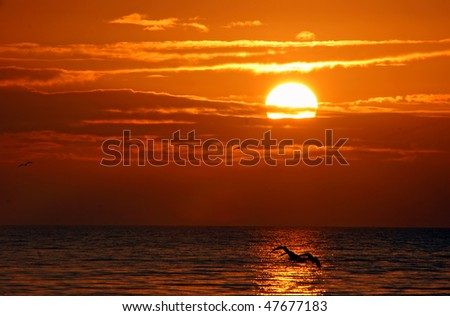 A Beautiful Sunrise On Sanibel Island Florida - stock photo