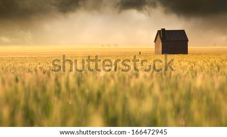 A beautiful sunrise over a rural field - stock photo