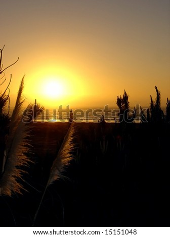 A beautiful sunset at Raglan Beach, North Island, New Zealand - stock photo
