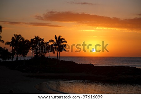 A beautiful sunset by the beach in Hawaii, with palm trees, ocean and vibrant sunset colors.  Lots of copy space.