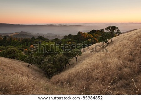 A beautiful sunset over a typical hilly California grassland in summer - stock photo