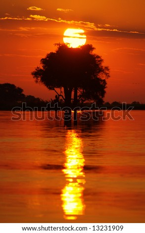 A Beautiful sunset, Zambia, Africa, with a one tree in the middle - stock photo