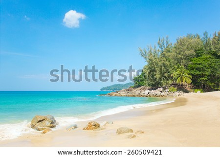 A beautiful tropical beach with palm trees at Phuket island, Thailand
