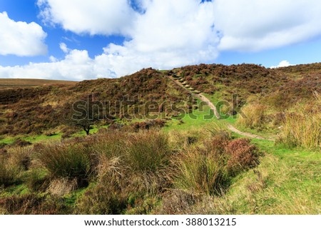 A beautiful view in Dartmoor National Park in England. - stock photo