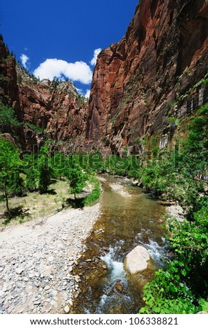 A beautiful view of zion national park - stock photo