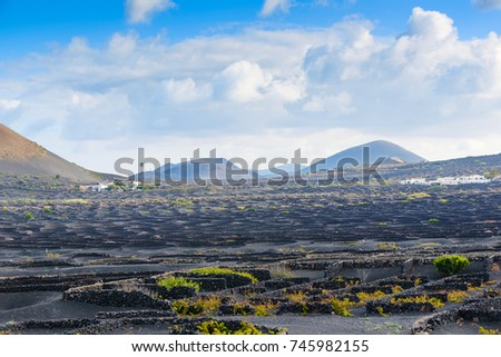 A beautiful Volcanic Landscape of  Lanzarote. Canary Islands. Spain