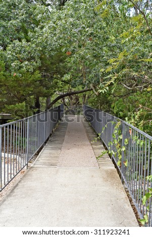 a beautiful walkway under trees