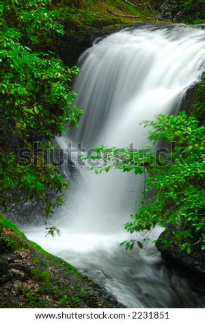 A beautiful waterfall and leaves in tropical forest. - stock photo