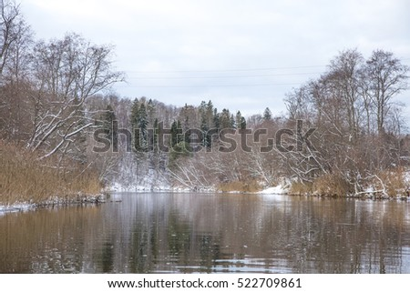 A beautiful winter scenery on the banks of river