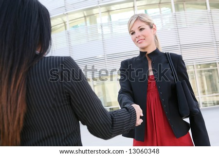 A beautiful young blonde business woman shaking hands