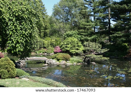 A beautifully landscaped koi pond and bridge
