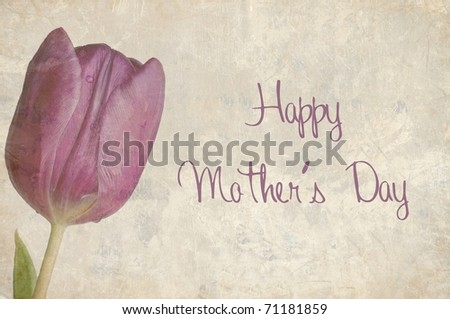 A Beautifully Textured Card with a Single Purple Tulip with the Text Happy Mother's Day written on it. - stock photo