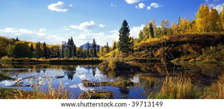 A beaver pond along the Kebler Pass Road in Gunnison National Forest in Colorado. - stock photo