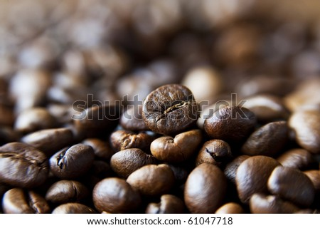 A bed of delicious and fragrant coffee beans