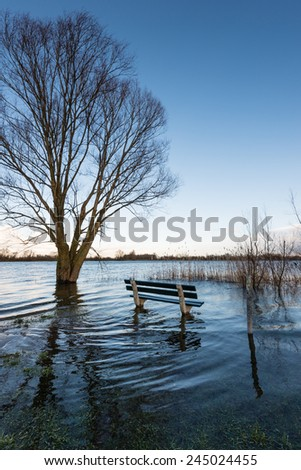 A bench and a bare tree in the water due to the high water level of the river. - stock photo
