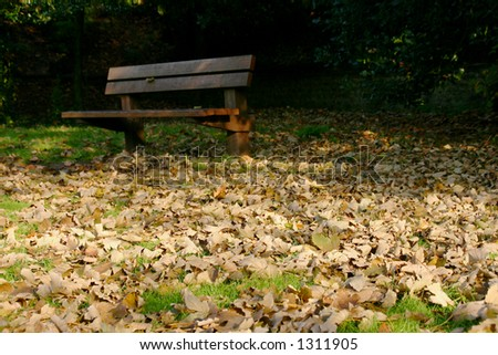 A bench in a bed of fallen leaves.