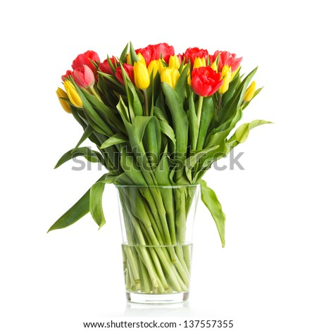 A big bouquet of fresh tulips - stock photo