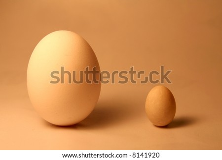 A big egg and a little egg. - stock photo