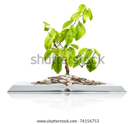 """A big open book with coins and tree. """"Reading makes you richer"""" concept. Isolated on white. - stock photo"""