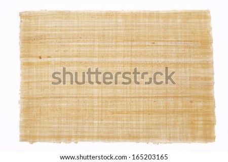 a big sheet of plain papyrus from egypt - stock photo