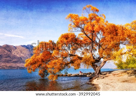 a big tree by lake wakatipu in queenstown, new zealand. A lone male resting by the lakeside enjoying the morning view. - stock photo
