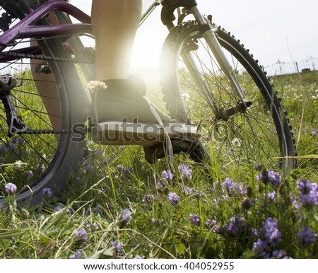 A bike. the sun. nature.