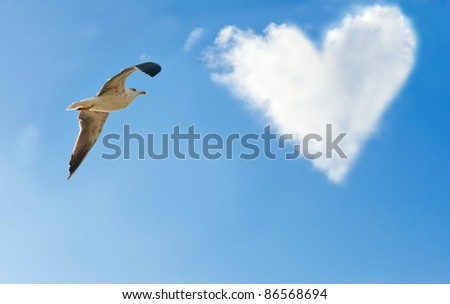 A bird and a cloud in the form of heart in the sky
