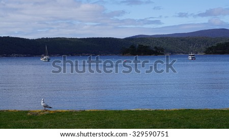 A bird and two of boats at Port Arthur, Tasmania - stock photo