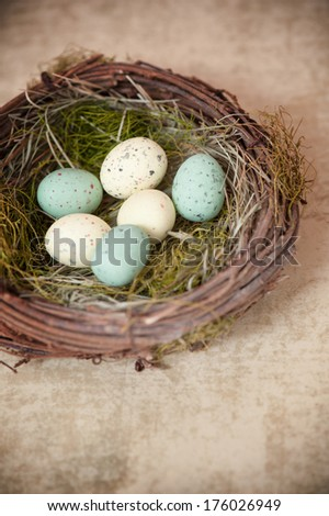 A bird's nest containing six different colored, speckled eggs. - stock photo