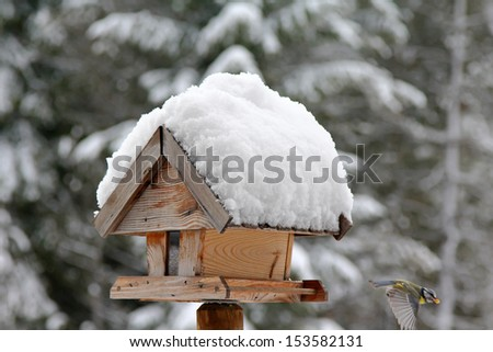 A bird with sunflower seed flying from a wooden bird feeder with snow covering its roof during the Winter in Europe - stock photo