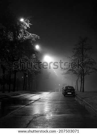 A black and white atmospheric photo of a foggy alley - stock photo