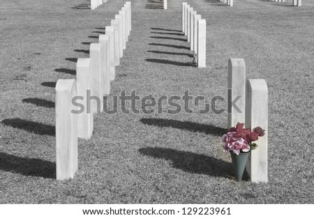 A black and white - selective color of gravestones in a National Cemetery. - stock photo