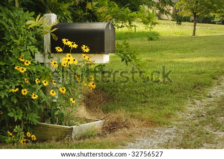 A black mailbox in a rural setting with Black-Eyed-Susans growing beside it.