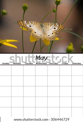 A blank calendar of the month of May. - stock photo