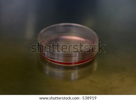 A blank Petri dish (Tissue Culture Dish), with red DMEM media. - stock photo