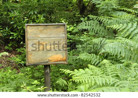A blank sign in a forest - stock photo