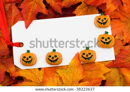 A blank tag on a fall leaf background, Fall Leaves