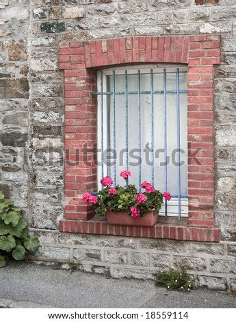 A blue barred window and some flowers