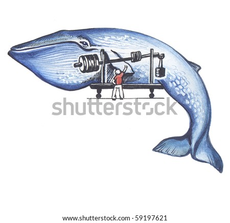 A blue whale. The biggest mammal in the World. - stock photo
