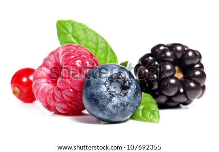 A blueberry, raspberry, blackberry and red currants on a white background - stock photo