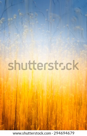 A blurred abstract of a field of tall, golden brown grass.  Image has a glowing center. - stock photo