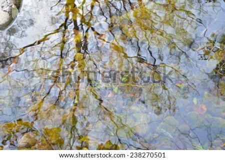 A blurred reflection of trees and sky on small woodsy river. Autumn. - stock photo