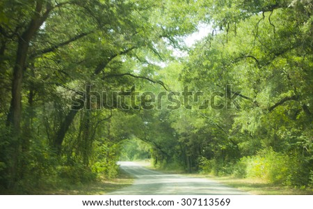 a blurry greenery street to the country home - stock photo