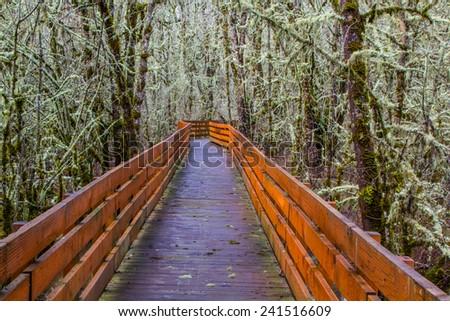 A boardwalk across a wetland in William L. Finley National Wildlife Refuge - stock photo