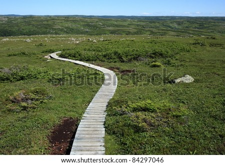Gros Morne Mountain Trail