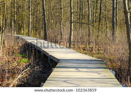 A boardwalk winds through a wetlands marsh in early spring