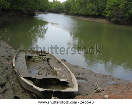A boat wreck on the mangrove swamp - stock photo