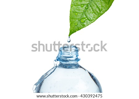 A bottle filled with fresh water drops from a green wet leaf. Freshness and purity of water concept. Objects on white. - stock photo