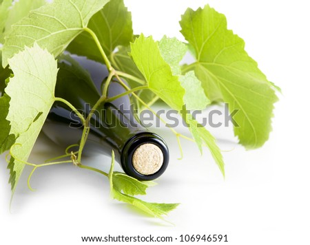 A bottle of white wine; grape leaves around it. - stock photo